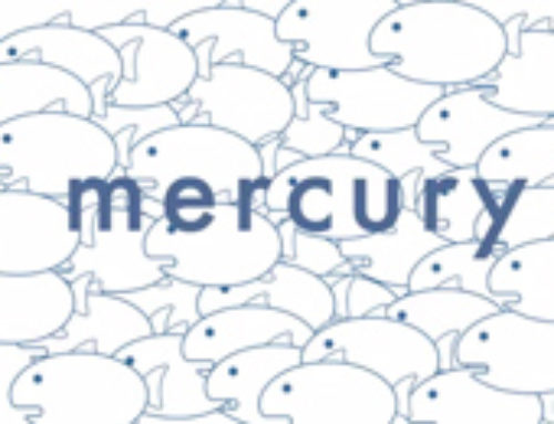 Mercury Video